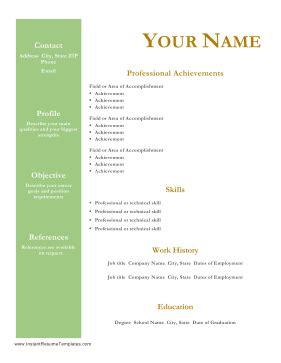 Professional Resume Template Word - maxresumescom